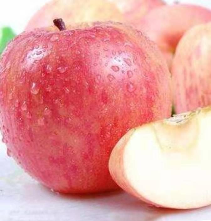 山西运城河东批发苹果甜不甜?加入团队有一对一指导培训?